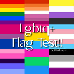 Test gaydar Sexually confused?