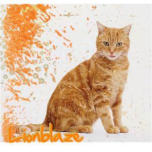 Brambleclaw, Murderer Of Firestar! A Warrior Cats Fanfiction