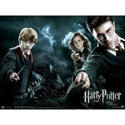 Your Harry Potter Life (Girls only, LONG results) - Quiz