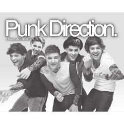 Punk Direction Preference Stories