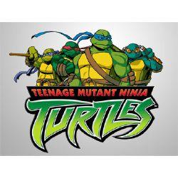 Teenage Mutant Ninja HUMANS? *TMNT Fanfic*