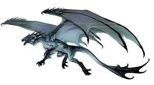 Dragon Rider (Hiccup Fanfiction)