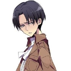 Can I Have a Hand? ( Levi x Injured!Reader )