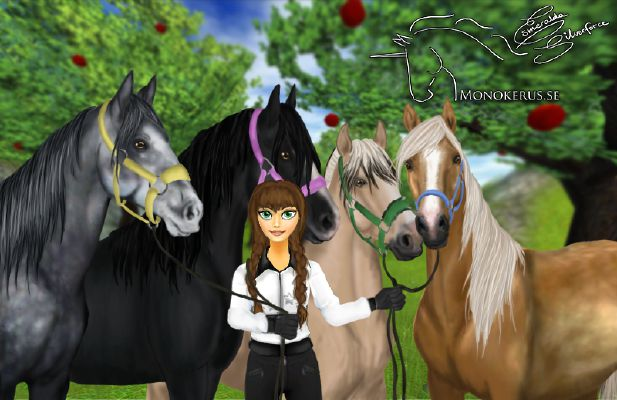 Star Stable Online: What horse breed are you? (Long ) - Quiz