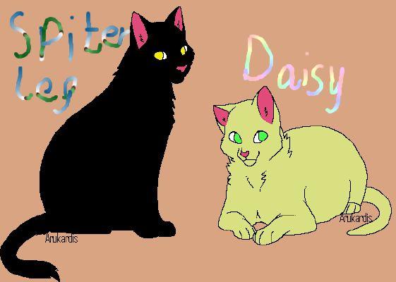 Spiderleg x Daisy   Ridiculous Warrior Cat Couples