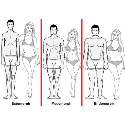 What body type do you have? - Quiz