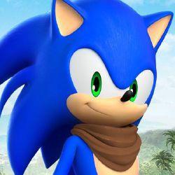 Human Shadow The Hedgehog