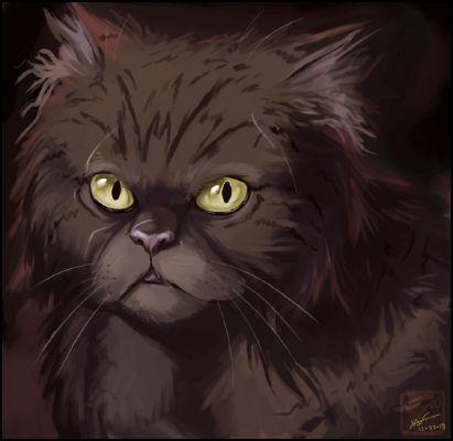 Brokenstar x Reader | Cяυѕнιηg ση уσυ Warrior cats x Reader one-shots
