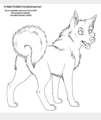 Y\n) and Company (Dog America x Dog Reader) HIATUS