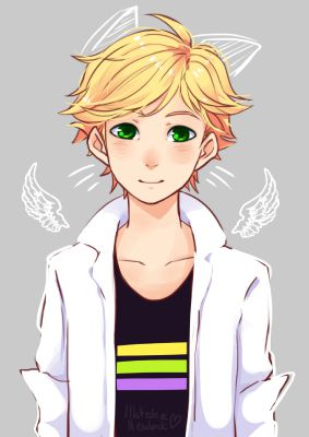 The Hunger Games (Adrien x reader)