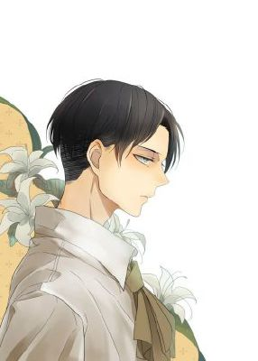 Levi x Reader ~ Graceful | Anime One-Shots (ON HOLD)