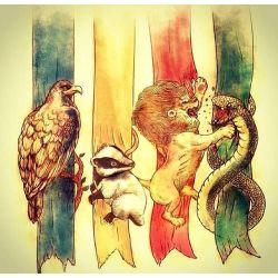 Harry Potter Variou Reader