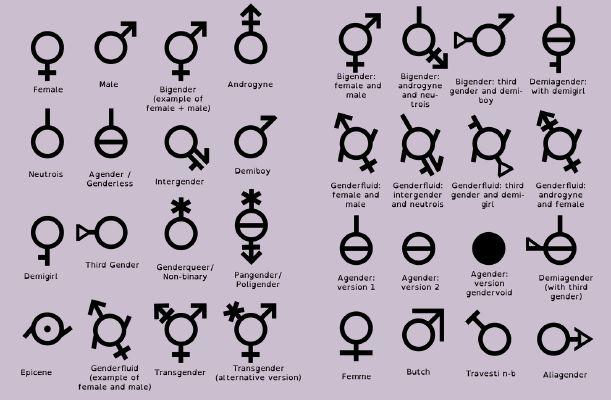 Identity quizzes gender Which Gender