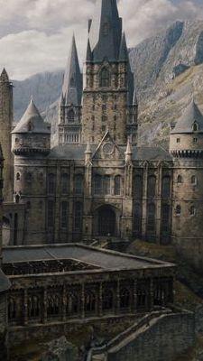 Harry Potter Preferences/Scenarios
