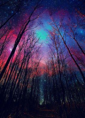 Drie: Suspicions   Celestial Infatuation