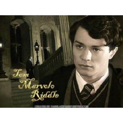 Voldermort is Gone, Tom Riddle is Here