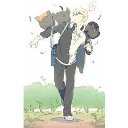 Lovely Insults [ Tsukishima Kei x Reader ]