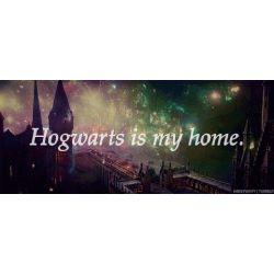 Harry Potter Future Life Ho Quizzes