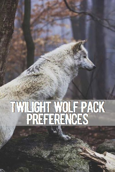 11: It Get's Heated And Someone Walks In | Twilight Wolf Pack