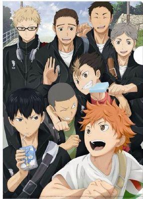 Karasuno's Volleyball Family!
