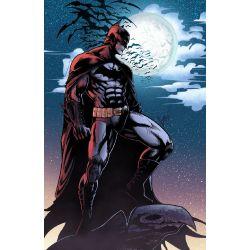 Bruce Wayne Reader