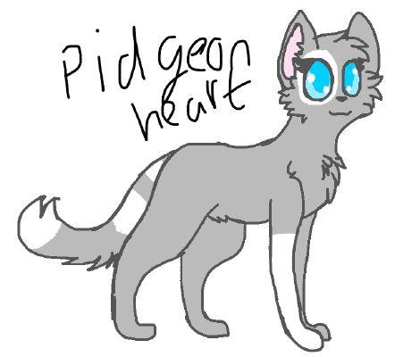 Pigeonheart ~ADOPTED~   Adopt a warrior cat/Survivor(dog)!