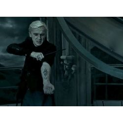 The Child of Voldemort(Voldemort and Draco Fanfic)