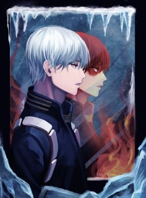 Shoto Todoroki From Boku No Hero Academia】 | Anime