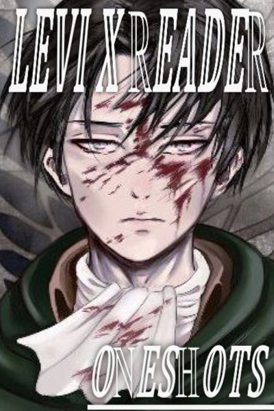 Levi X Reader Argument Lemon