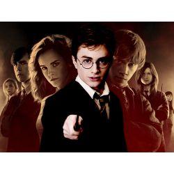 Harry Potter Gen Quizzes