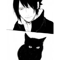 Sasuke Reader
