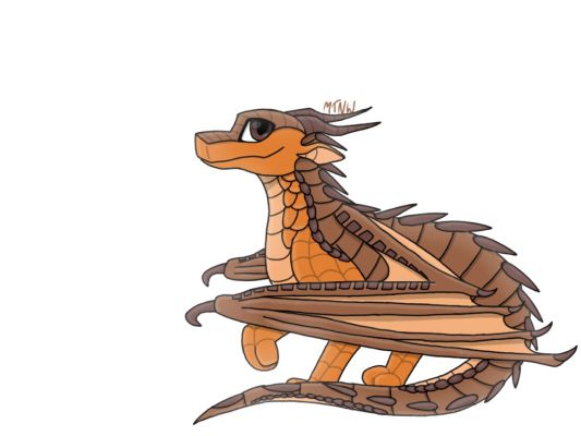 Are You A Human With Dragon Wings Or A Dragon Tail Quiz