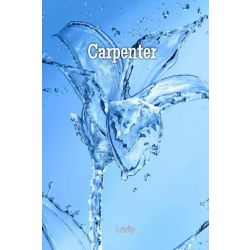 Chapter 5 | Carpenter || Book One [PJO Fanfiction]