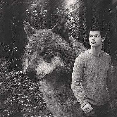 Chapter 40 | Running With Wolves (Twilight Saga~Jacob Black)