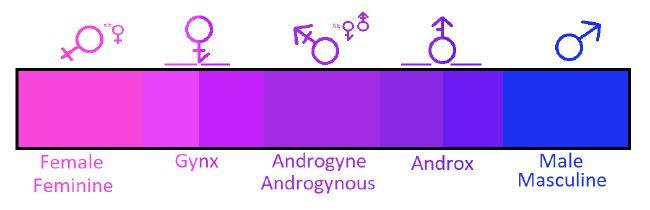 Identity quizzes gender Gender Identity