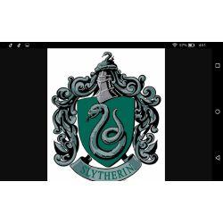 The Slytherin Princess (Draco Malfoy Fanfiction)   Draco Malfoy Love