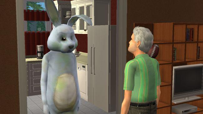 Bunny sim