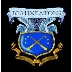 Beauxbatons Quizzes Hogwarts mystery hosting the beauxbatons. beauxbatons quizzes