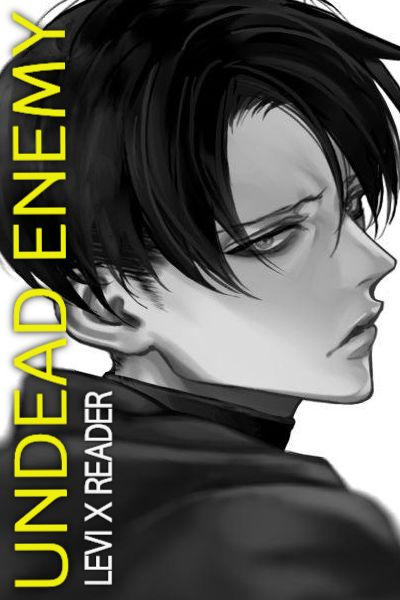 17 | Undead Enemy || Levi x Reader
