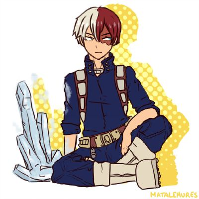 Workout Evenings ( Todoroki Shoto x Reader ) | My Hero