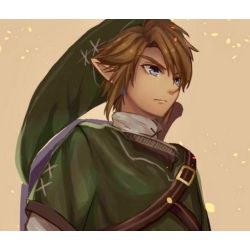 Twilight Princess Link X Reader