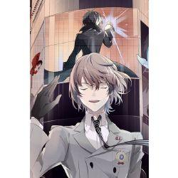 Akira Kurusu Reader