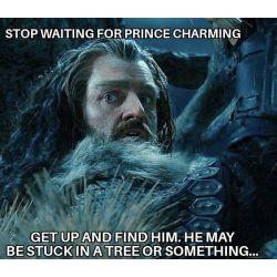Thorin Reader Stories