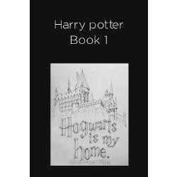 Harry Potter Reader Insert
