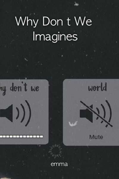 Why Don t We Imagines