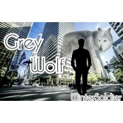 Chapter 2 | Grey Wolf|| Captain America Fanfiction (Book 2)
