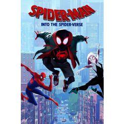 Spider Man Reader
