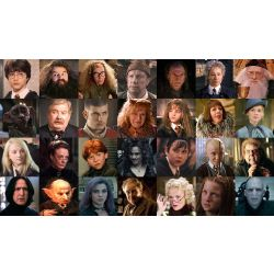 Harry Potter Character Quizzes