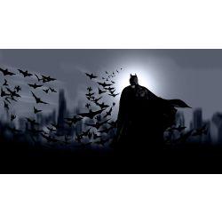 Batman Reader Stories