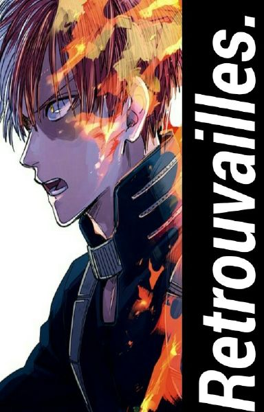 Chapter 6]: Security  | Retrouvailles  [Todoroki Shoto x Reader]
